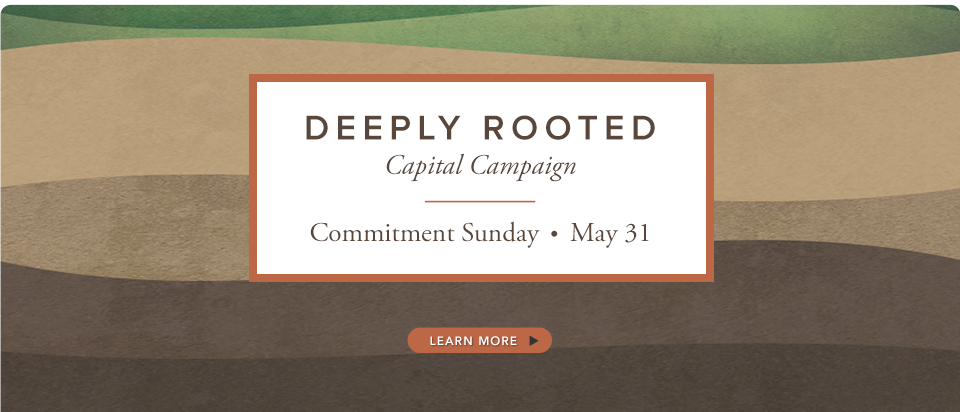 Deeply Rooted slide